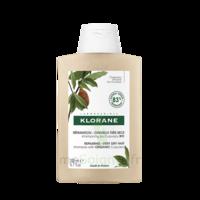 Klorane Beurre Cupuaçu Bio Shampoing Cheveux Très Secs 200ml à Bordeaux