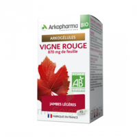 Arkogélules Vigne Rouge Bio Gélules Fl/45 à Bordeaux