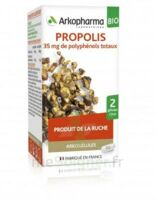 Arkogélules Propolis Bio Gélules Fl/45 à Bordeaux