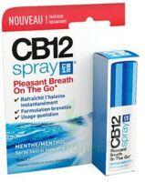 CB 12 Spray haleine fraîche 15ml à Bordeaux