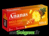 MILICAL ANANAS BRULEUR DE GRAISSE à Bordeaux