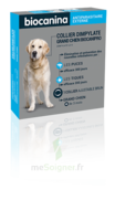 Biocanipro Collier chien B/1 à Bordeaux